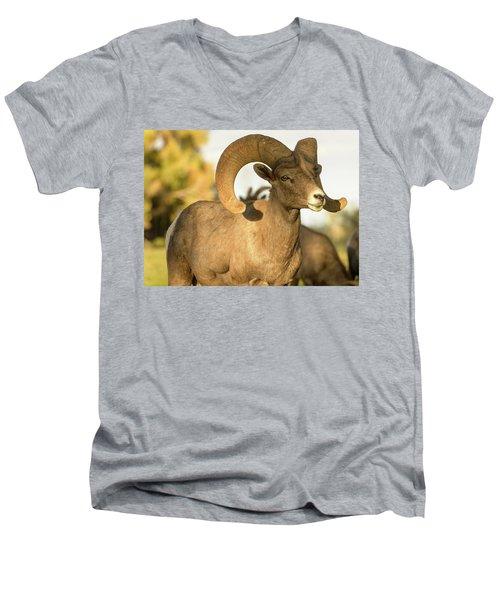 Bighorn Ram Men's V-Neck T-Shirt by Scott Warner