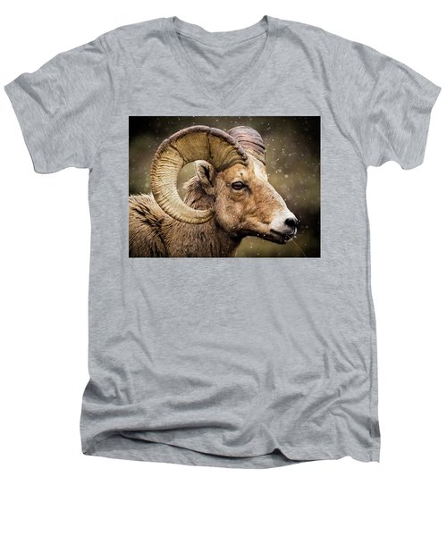Bighorn Sheep In Winter Men's V-Neck T-Shirt