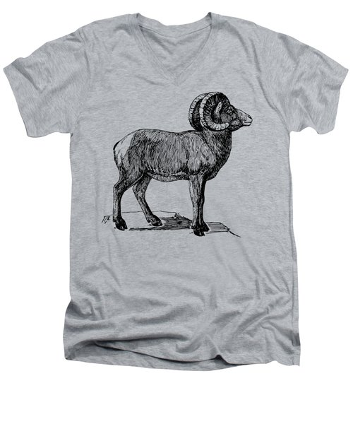 Bighorn Sheep  Men's V-Neck T-Shirt