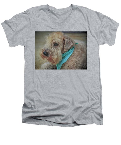 Binkley Men's V-Neck T-Shirt