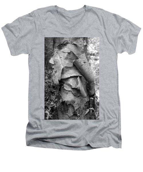 Birch Bark Men's V-Neck T-Shirt