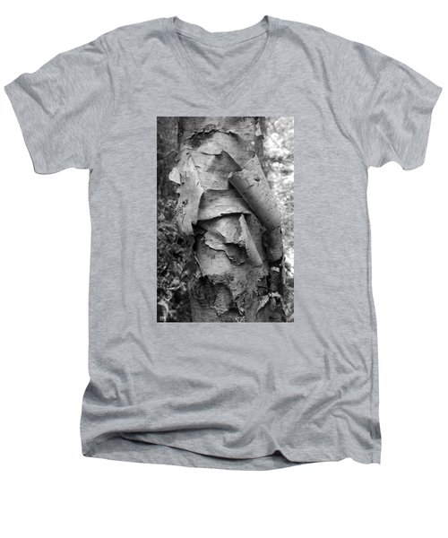 Birch Bark Men's V-Neck T-Shirt