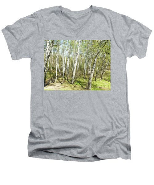 Birch Forest In Spring Men's V-Neck T-Shirt by Irina Afonskaya