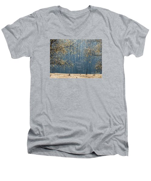 Birch Forest To The Morning Sun Men's V-Neck T-Shirt by Odon Czintos