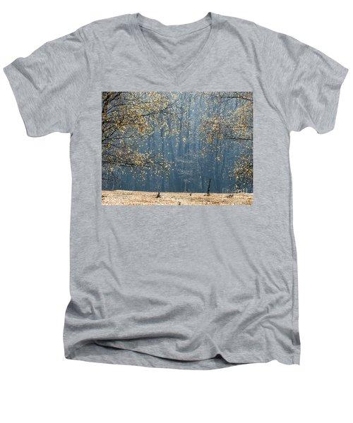 Birch Forest To The Morning Sun Men's V-Neck T-Shirt