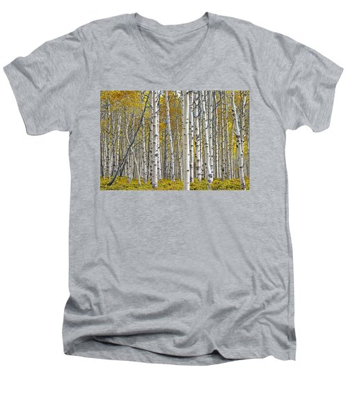 Birch Tree Grove With A Touch Of Yellow Color Men's V-Neck T-Shirt