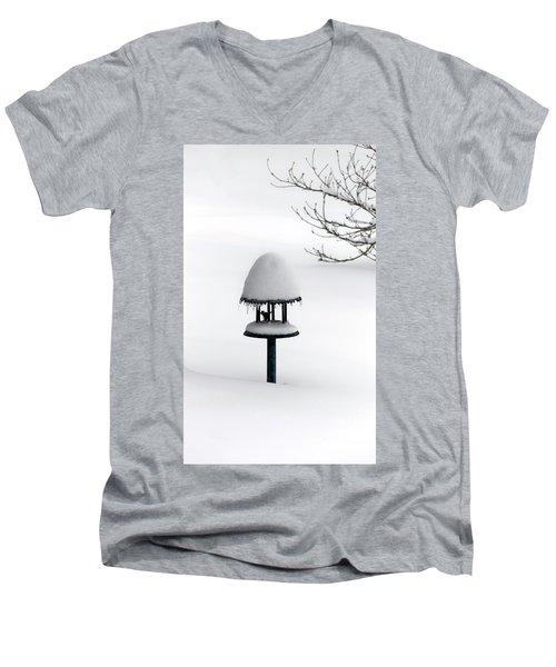 Bird Feeder In Snow Men's V-Neck T-Shirt