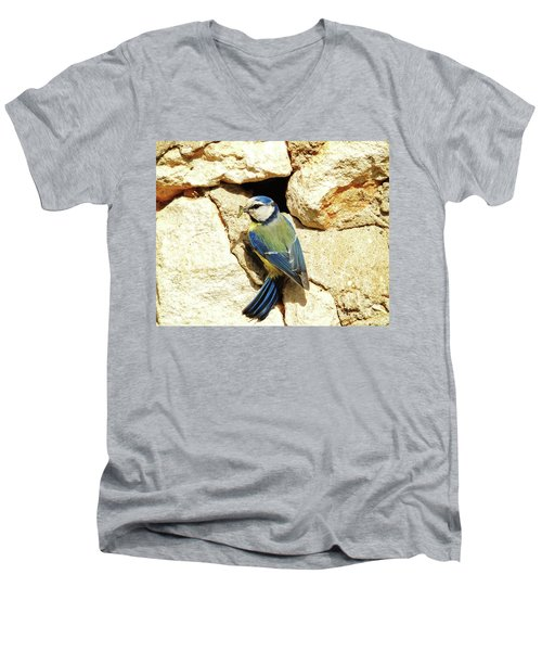 Bird Feeding Chick Men's V-Neck T-Shirt