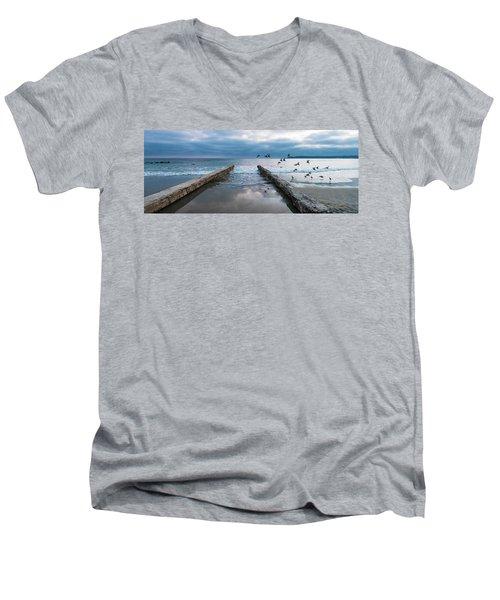 Bird Flight Men's V-Neck T-Shirt