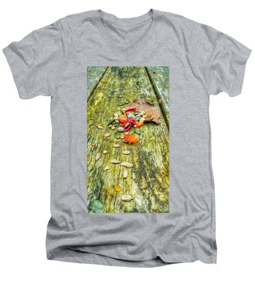 Bird Food Men's V-Neck T-Shirt by Isabella F Abbie Shores FRSA
