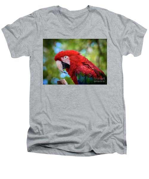 Men's V-Neck T-Shirt featuring the photograph Bird In Red by Lisa L Silva