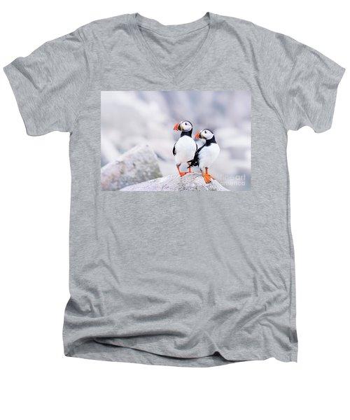 Birdland Men's V-Neck T-Shirt by Evelina Kremsdorf
