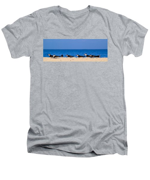 Birdline Men's V-Neck T-Shirt