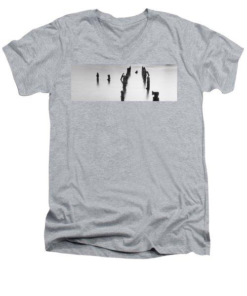 Birds Eye View.. Men's V-Neck T-Shirt
