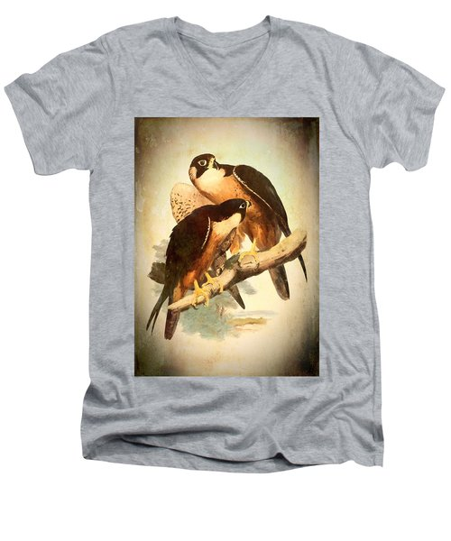 Birds Of Prey 2 Men's V-Neck T-Shirt
