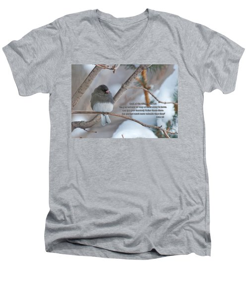 Birds Of The Air Men's V-Neck T-Shirt