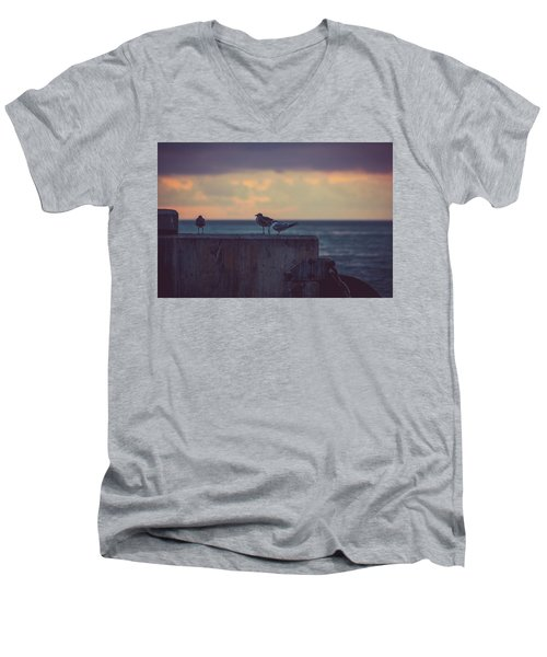 Birds Men's V-Neck T-Shirt by Scott Meyer