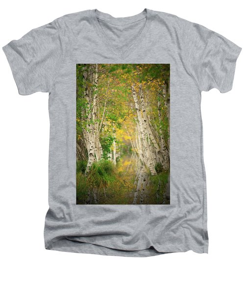 Men's V-Neck T-Shirt featuring the photograph Birtch Row  by Emmanuel Panagiotakis