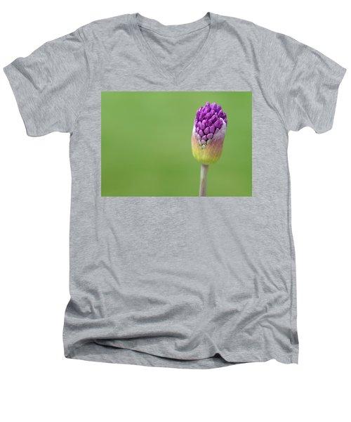 Birthing Springtime Men's V-Neck T-Shirt by Linda Mishler
