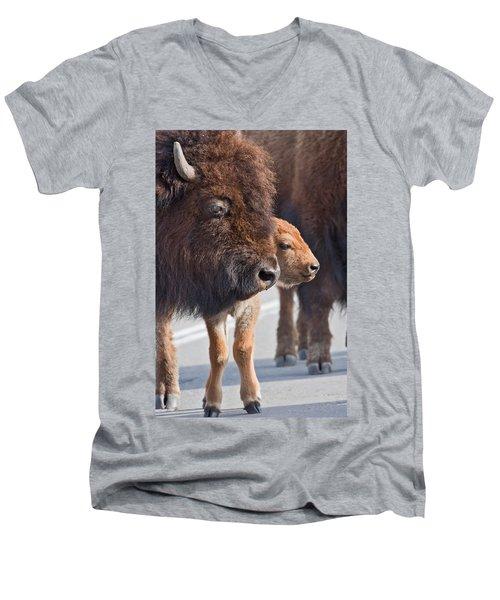 Bison And Calf Men's V-Neck T-Shirt