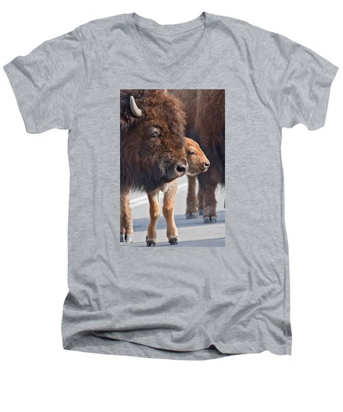 Men's V-Neck T-Shirt featuring the photograph Bison And Calf by Wesley Aston