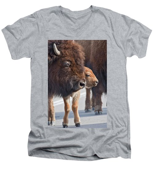 Men's V-Neck T-Shirt featuring the photograph Bison Family by Wesley Aston