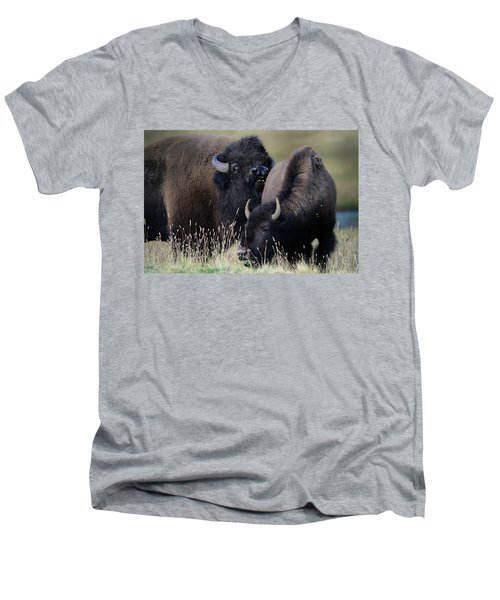 Bison Grasses Men's V-Neck T-Shirt