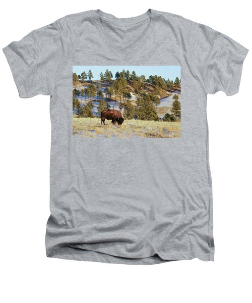 Bison In Custer State Park Men's V-Neck T-Shirt