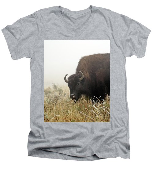 Bison In The Frosty Morning Men's V-Neck T-Shirt