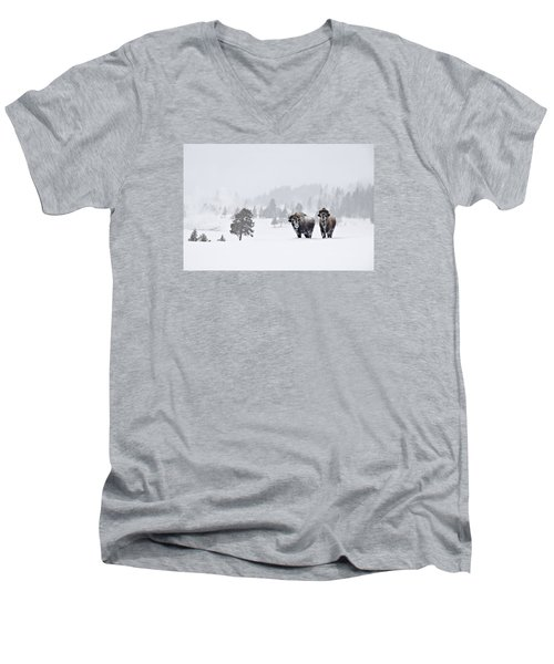 Bison In The Snow Men's V-Neck T-Shirt by Gary Lengyel