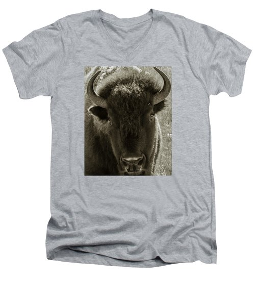 Bison Surprise Men's V-Neck T-Shirt by Elizabeth Eldridge