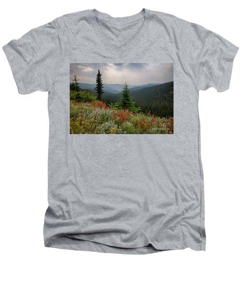 Bitterroot Summer Men's V-Neck T-Shirt