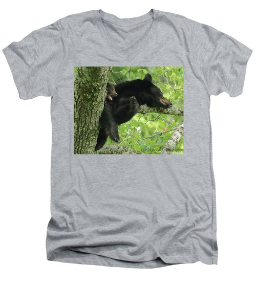 Men's V-Neck T-Shirt featuring the photograph Black Bear In Tree With Cub by Coby Cooper