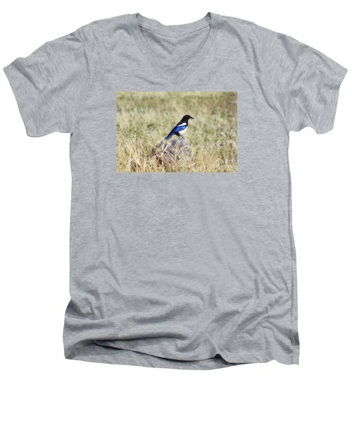 Black-billed Magpie Men's V-Neck T-Shirt