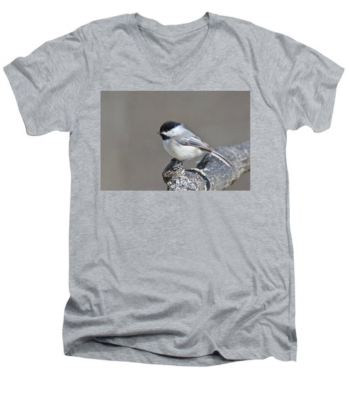 Black Capped Chickadee 1128 Men's V-Neck T-Shirt by Michael Peychich