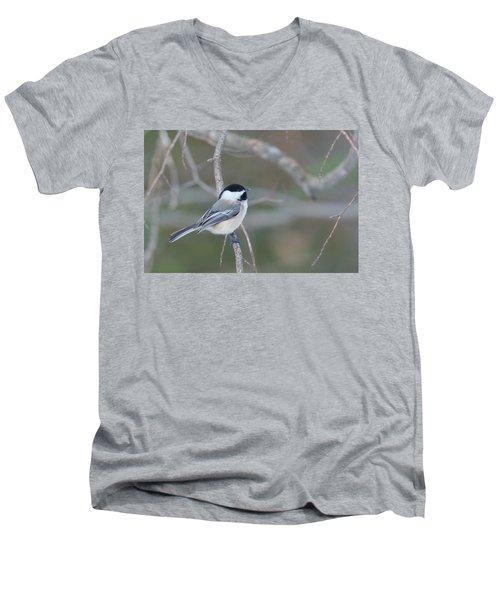 Black Capped Chickadee 1379 Men's V-Neck T-Shirt