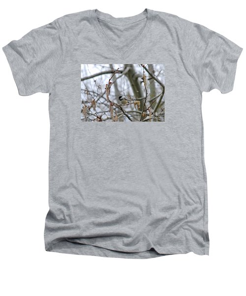 Men's V-Neck T-Shirt featuring the photograph Black-capped Chickadee 20120321_38a by Tina Hopkins