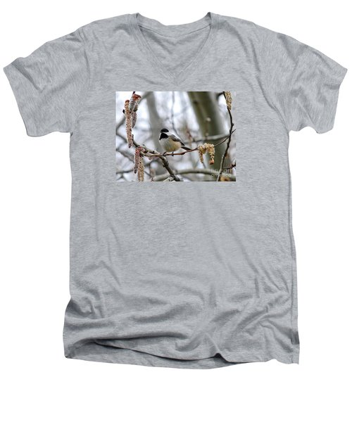 Men's V-Neck T-Shirt featuring the photograph Black-capped Chickadee 20120321_39a by Tina Hopkins