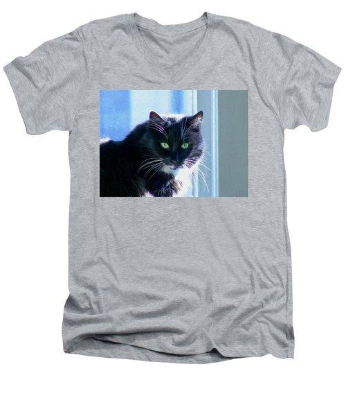Black Cat In Sun Men's V-Neck T-Shirt