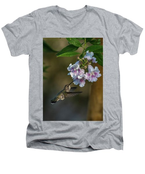 Black-chinned Hummingbird Men's V-Neck T-Shirt by Martina Thompson