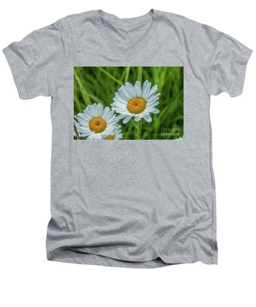 Black-headed Daisy's Men's V-Neck T-Shirt
