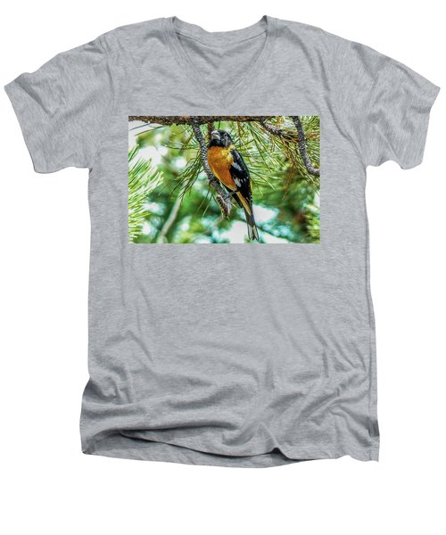 Black-headed Grosbeak On Pine Tree Men's V-Neck T-Shirt by Marilyn Burton