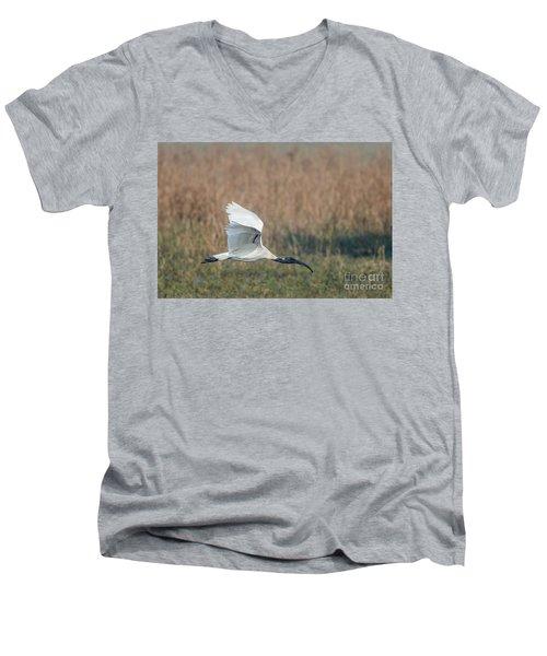 Black-headed Ibis 01 Men's V-Neck T-Shirt