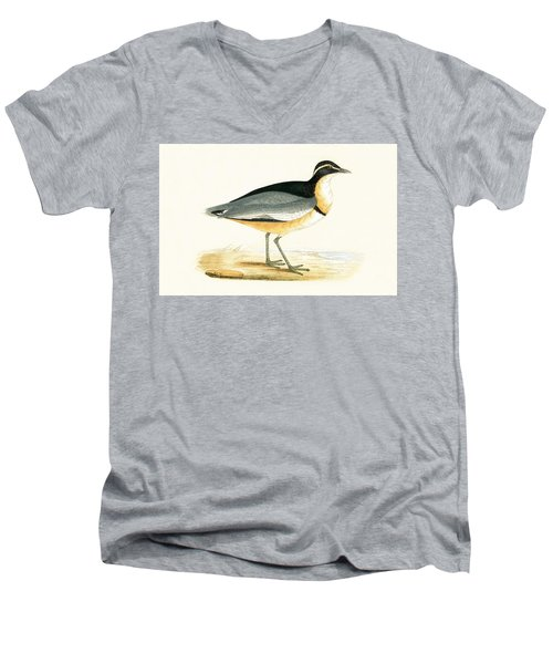 Black Headed Plover Men's V-Neck T-Shirt by English School