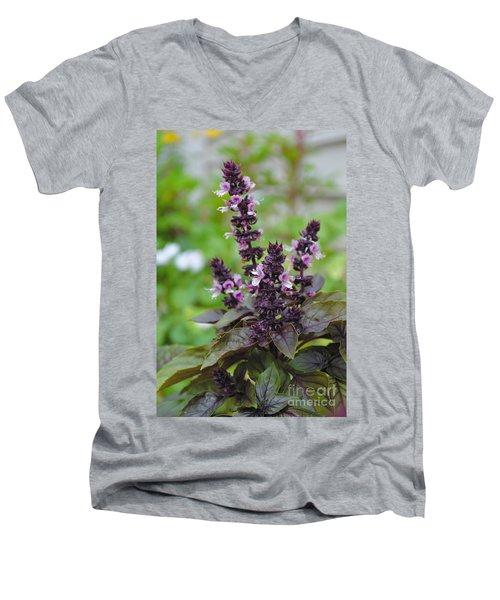 Black Opal Basil Flower Men's V-Neck T-Shirt