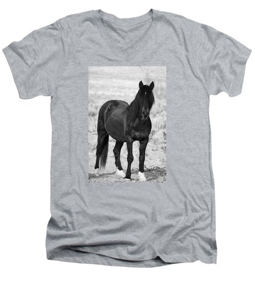 Black Wild Mustang Stallion Men's V-Neck T-Shirt