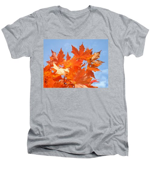Blazing Maple Men's V-Neck T-Shirt