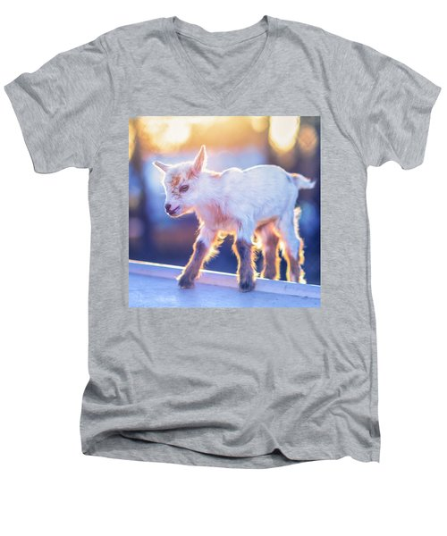 Little Baby Goat Sunset Men's V-Neck T-Shirt