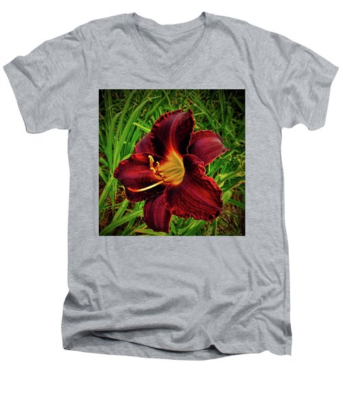 Blood Lily  Men's V-Neck T-Shirt