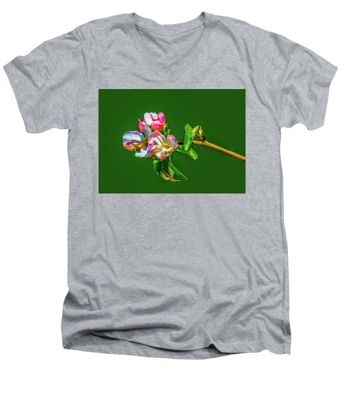 Bloom May 2016 Artistic Men's V-Neck T-Shirt by Leif Sohlman